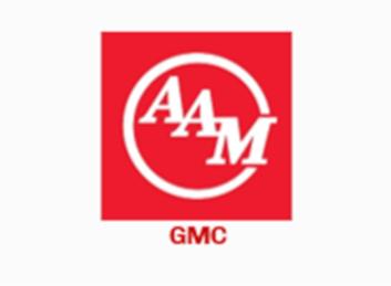 Inventario American Axle & Manufacturing (GMC)