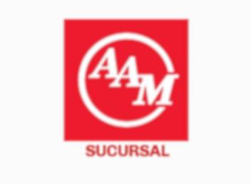 Inventario American Axle & Manufacturing (Sucursal)