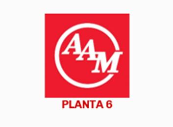 Inventario American Axle & Manufacturing (Planta 6)